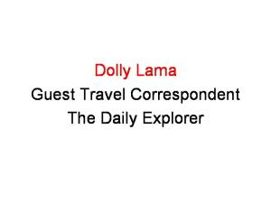 dolly-lama-profile-44pt